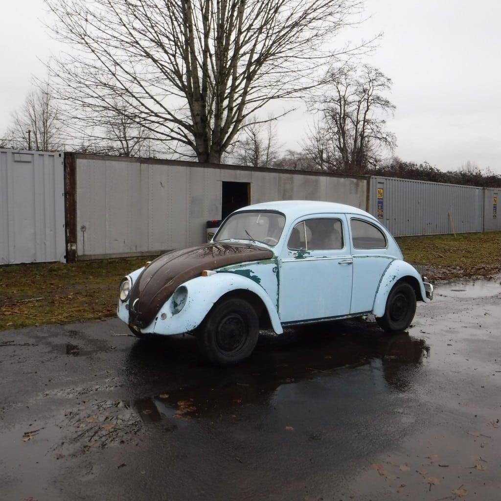 64' Blue Bug
